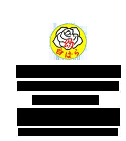 学校法人白ばらリズム学園 白ばら幼稚園 ロゴ